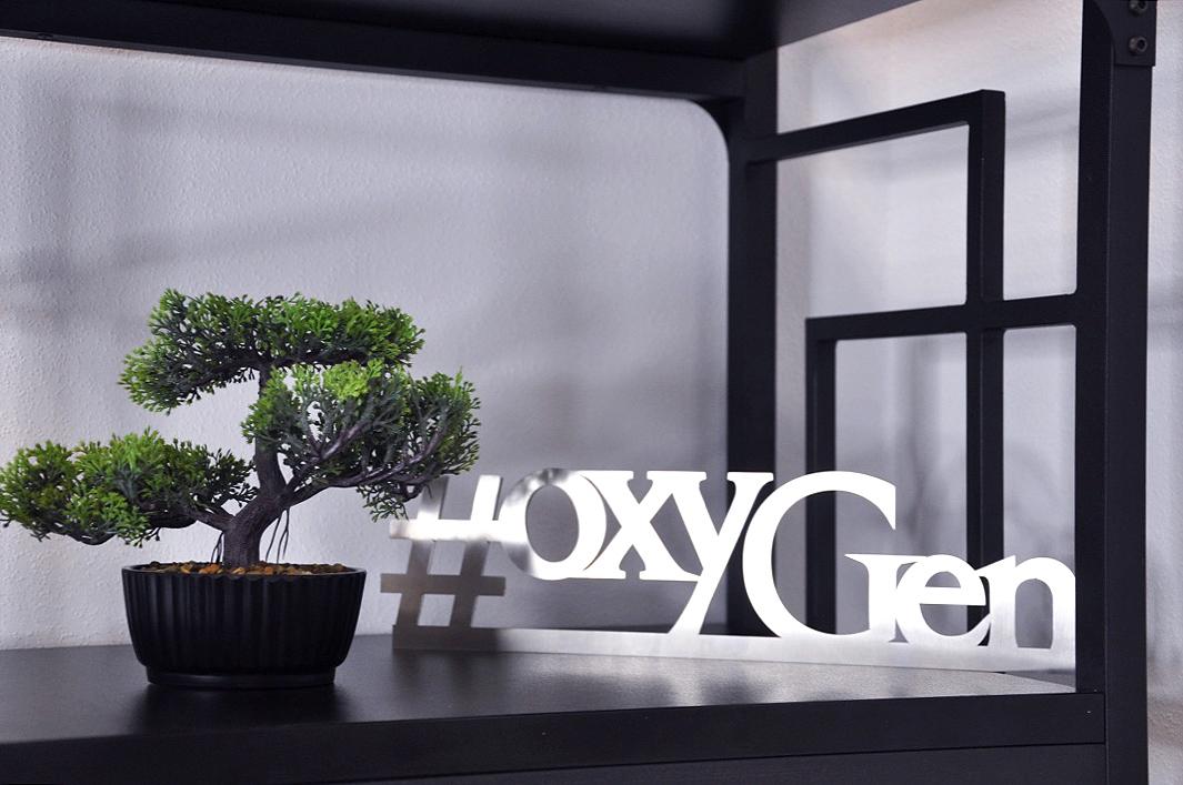 oxyGen_office_8.jpg
