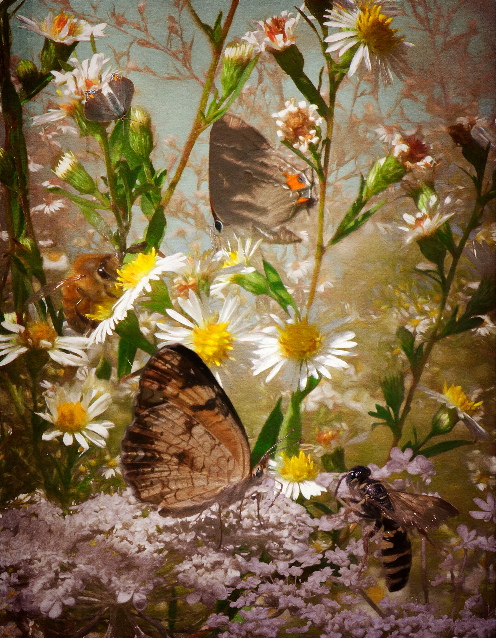 In the Shadows of Flowers - Archival Pigment Print on Hahnemühle Fine Art Rag25