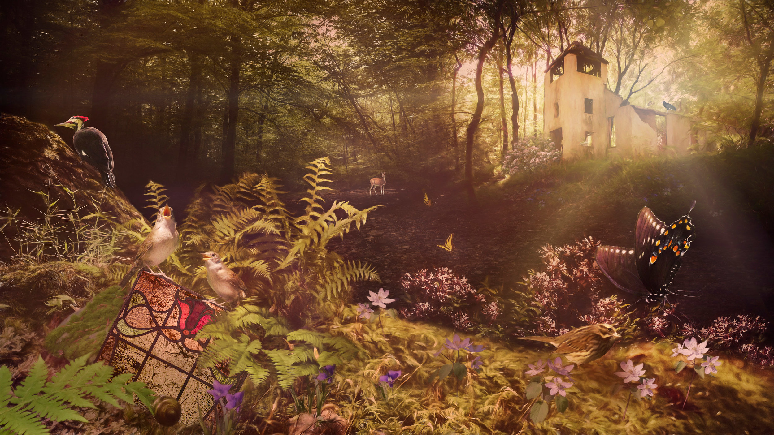 The Wren Sings a Hymn in the Forest - Archival Pigment Print on Hahnemühle Fine Art Rag20