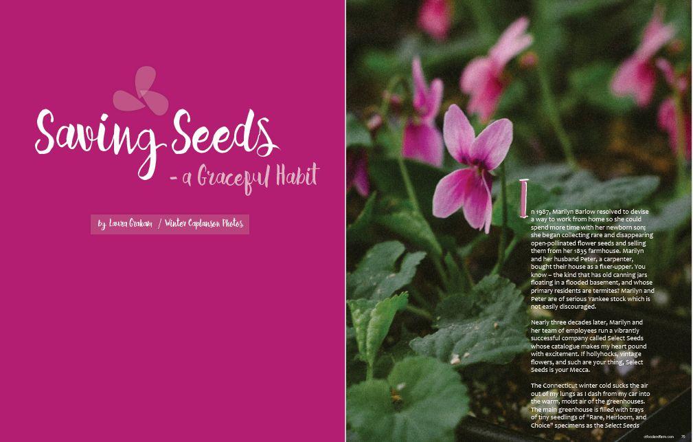 Connecticut Food & Farm, Spring 2016, Issue 4 - Saving Seeds - A Graceful Habit