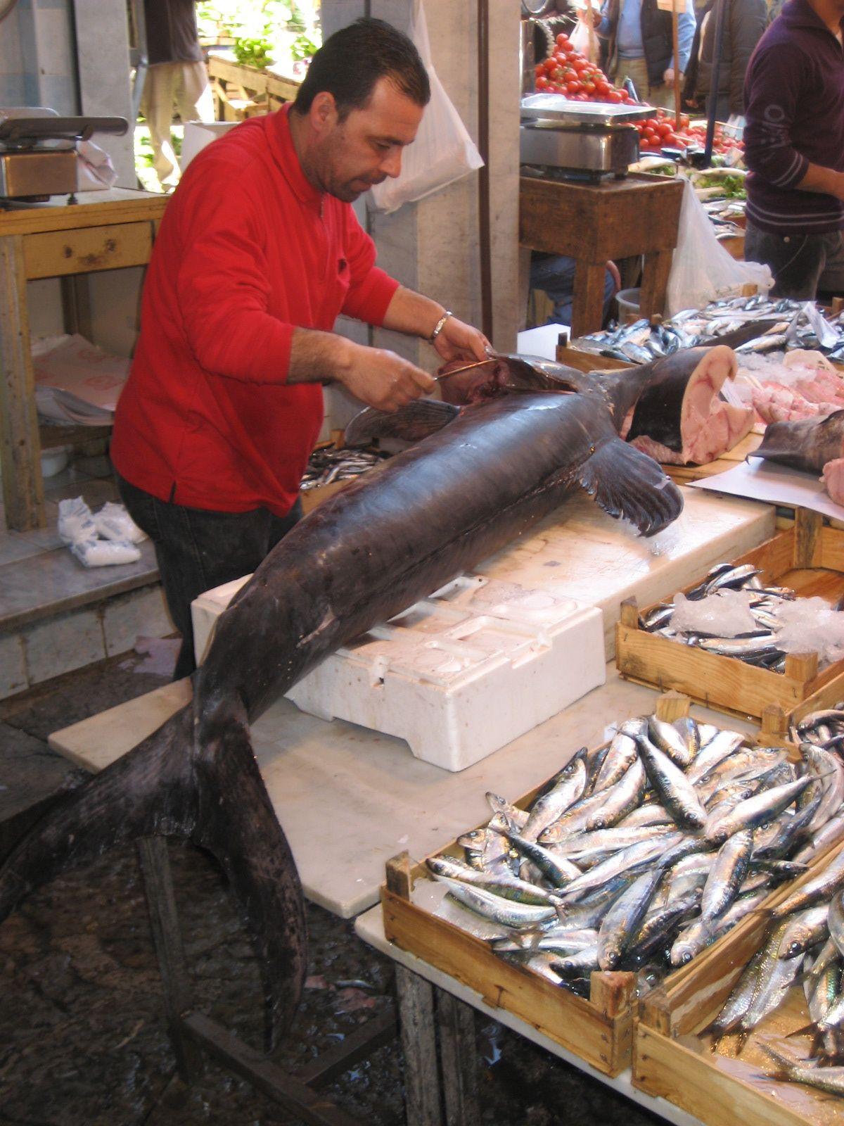 Swordfish in Sicily (2).jpg