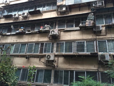 Another aspect of China : wire screens on every window ...