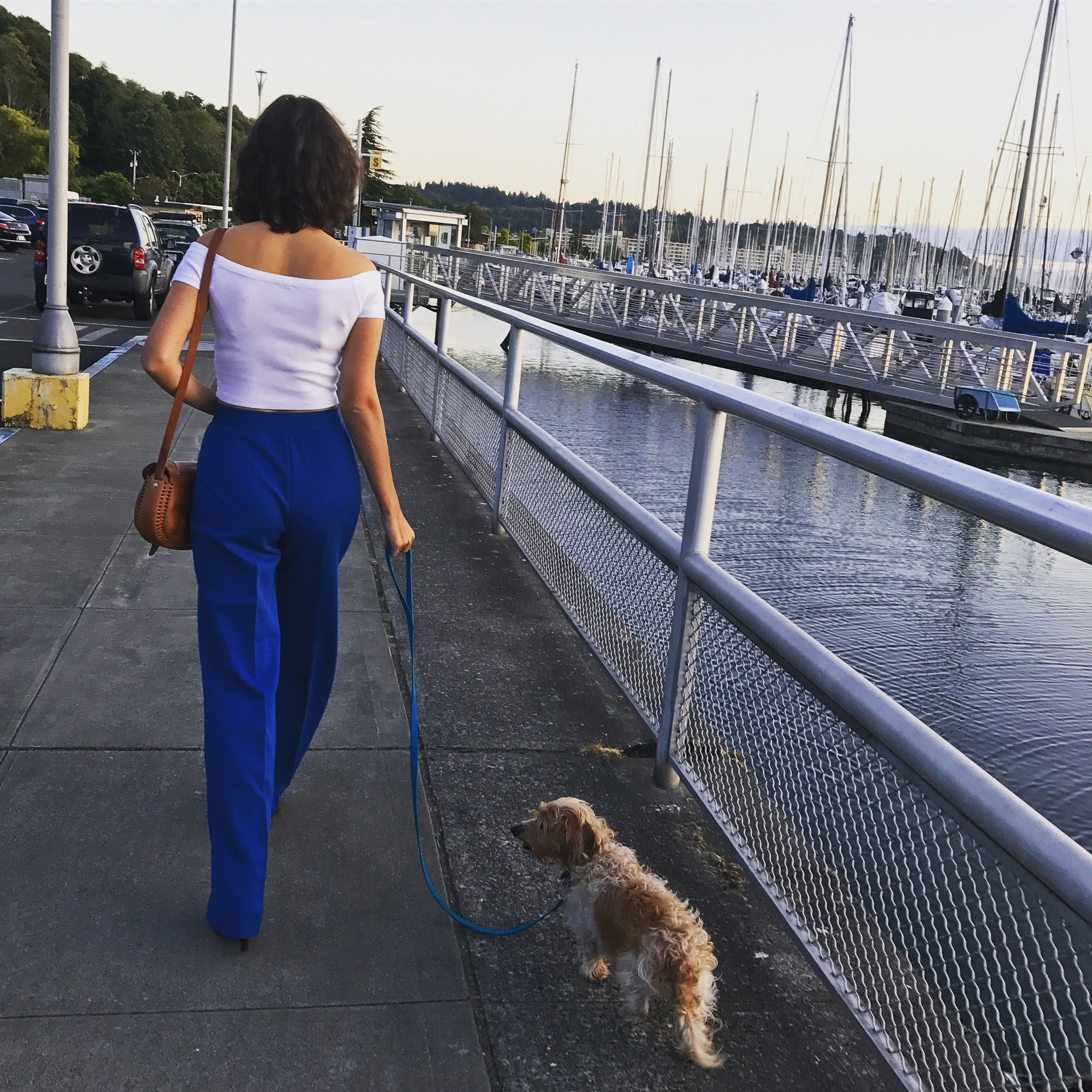 Walking my dog, Archie, by the waters of Seattle.