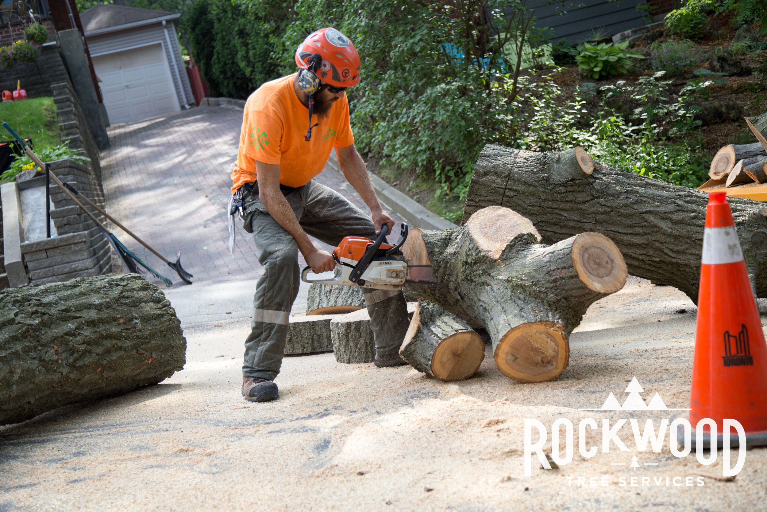 Great Service  We were very pleased with the work done by Rockwood Tree Service. Dylan was very profession and helpful and gave us a great estimate to cut down a dead tree, tidy up the old maple tree and remove overgrown bushes and shrubs. They worked very quickly and cleaned up the yard nicely before leaving. I would definitely use their service again.  -Anita D.8/25/2015