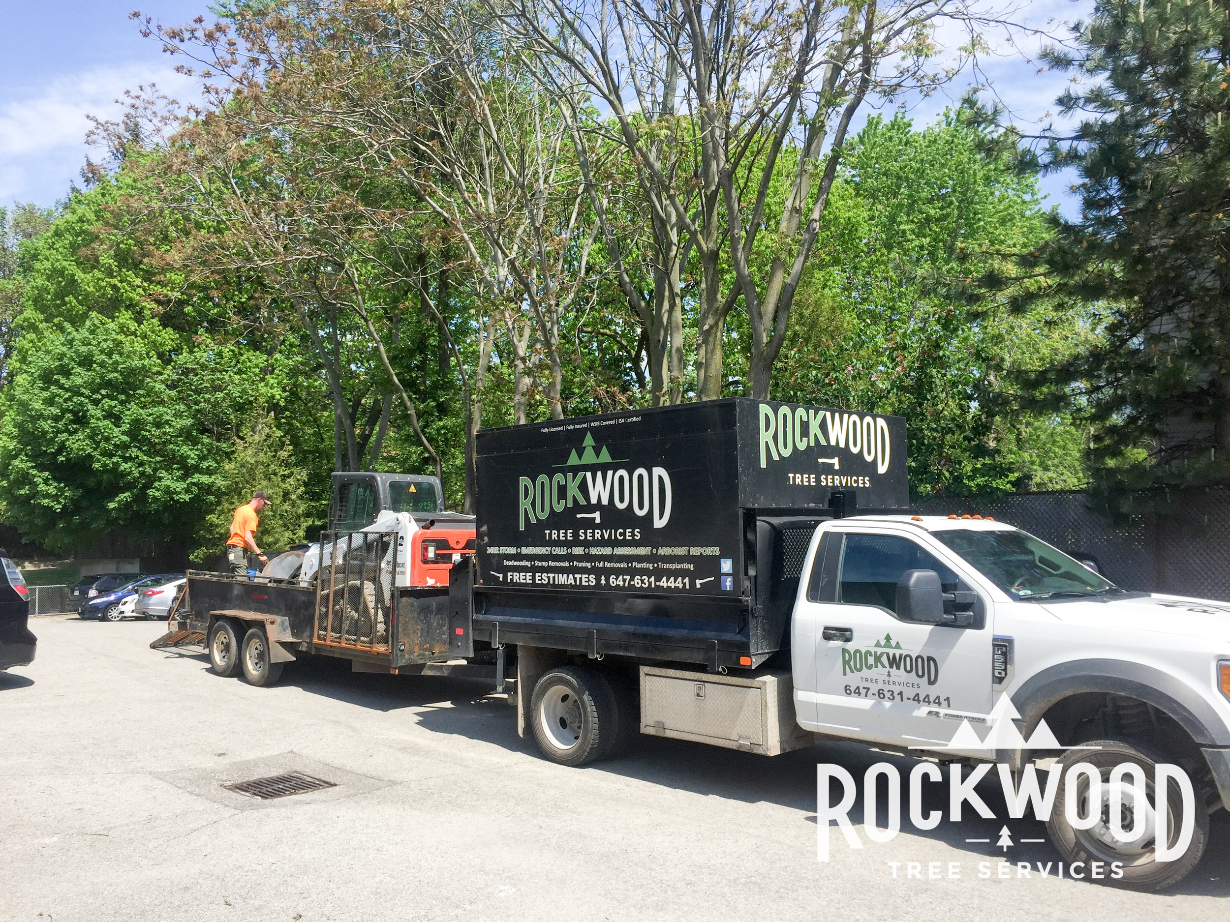 Great job by Dylan and the guys at Rockwood! I had a tree removed and others pruned. Dylan was very professional and gave us a great price. They did an excellent job cleaning up before leaving. I highly recommend.  -Richard H.11/21/2015