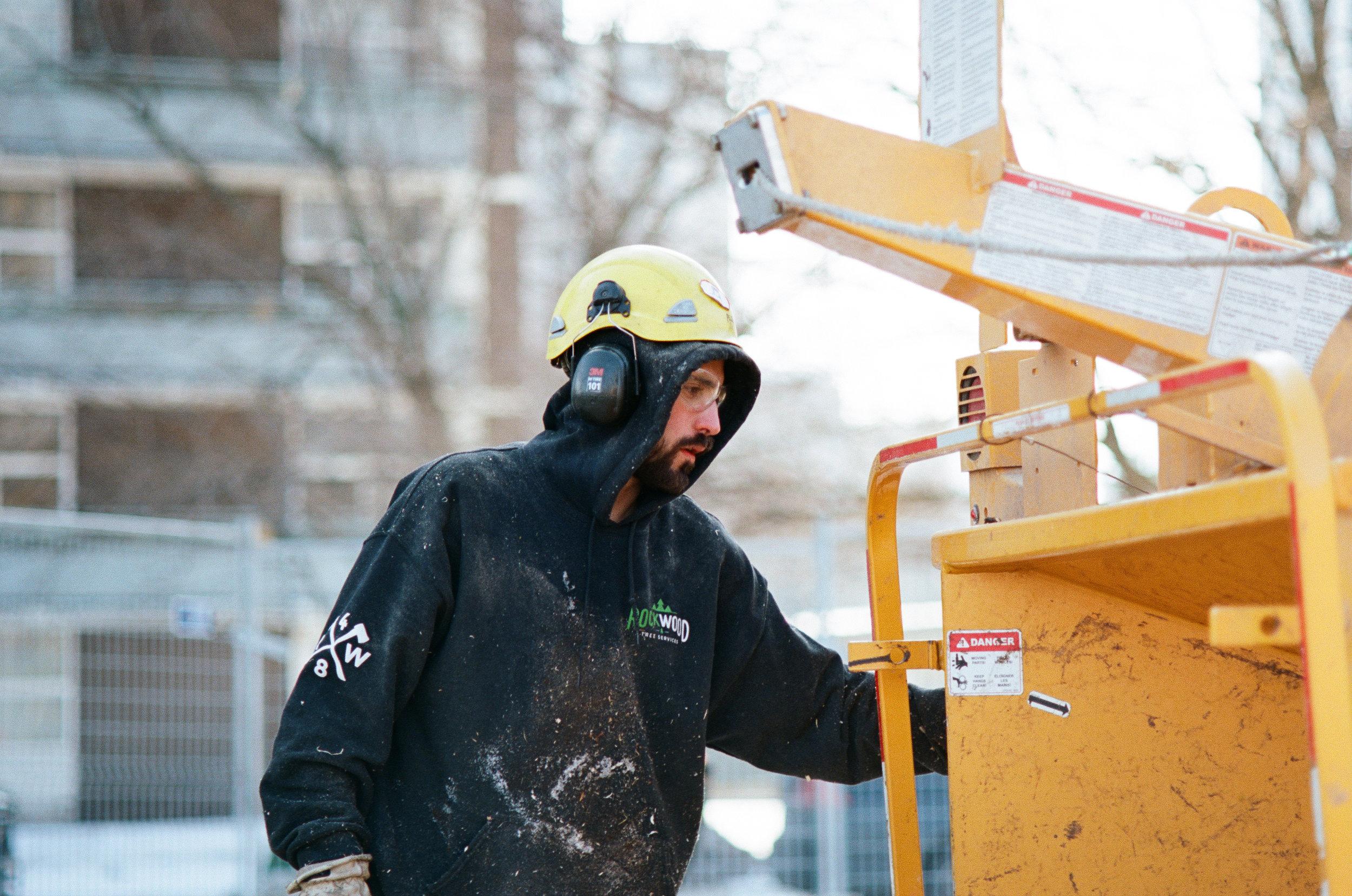 Rockwood Tree Services Toronto (40).jpg