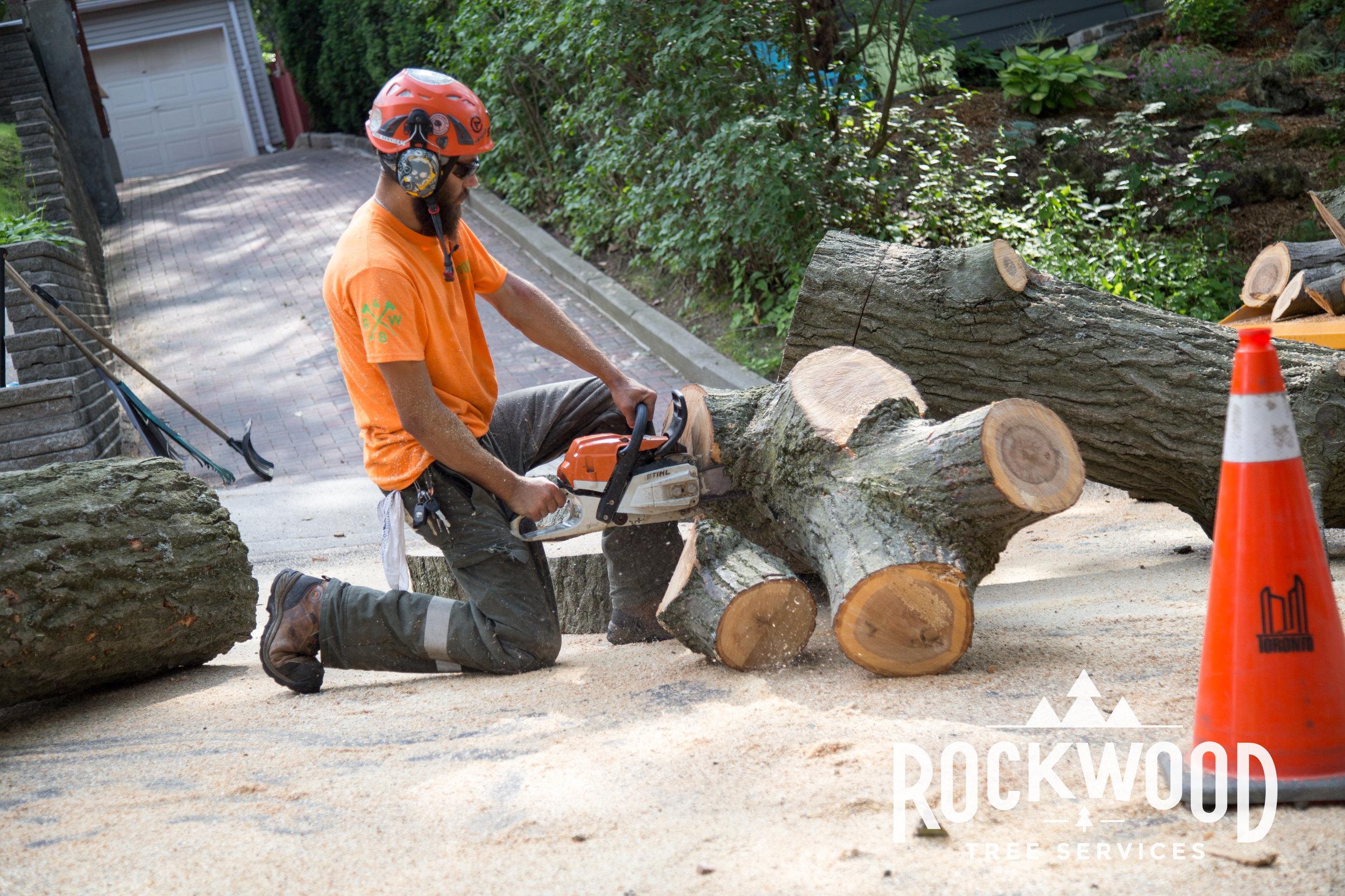Rockwood Tree Services (12 of 351).jpg