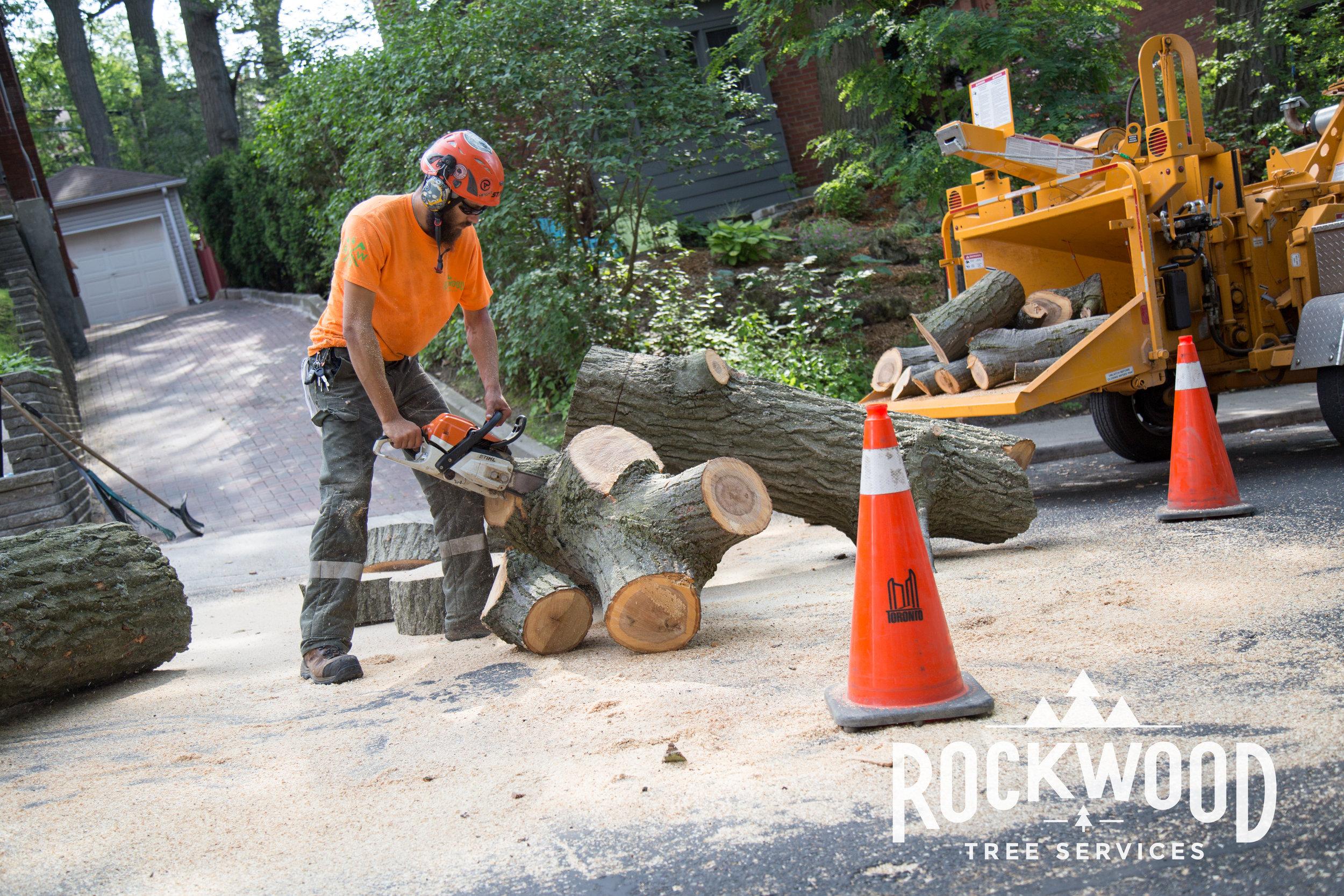 Rockwood Tree Services (17 of 351).jpg