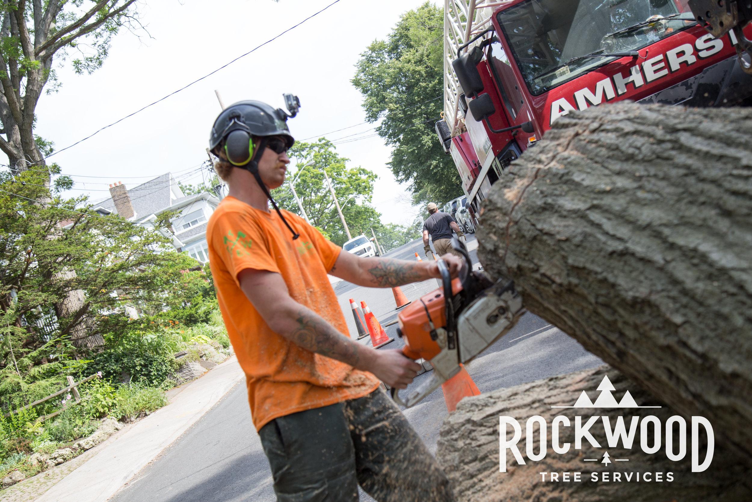 Rockwood Tree Services (119 of 351).jpg
