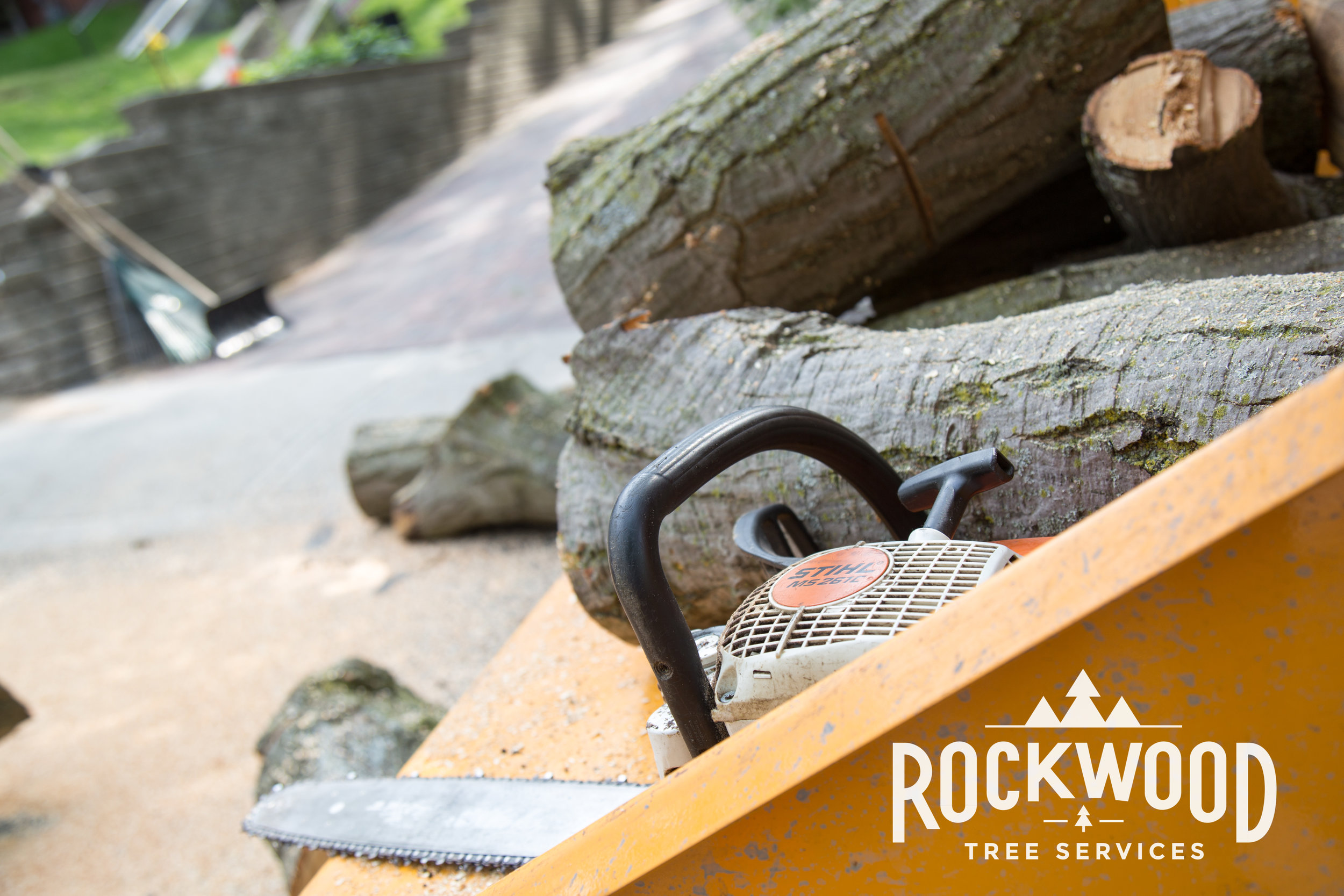 Rockwood Tree Services (58 of 351).jpg