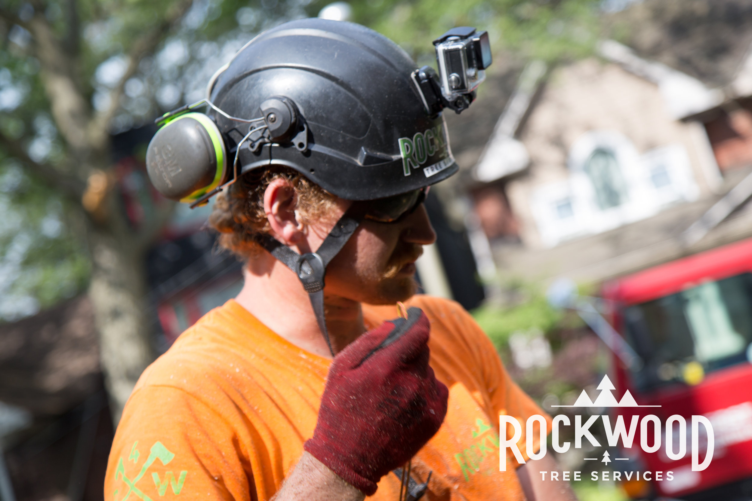 Rockwood Tree Services (84 of 351).jpg