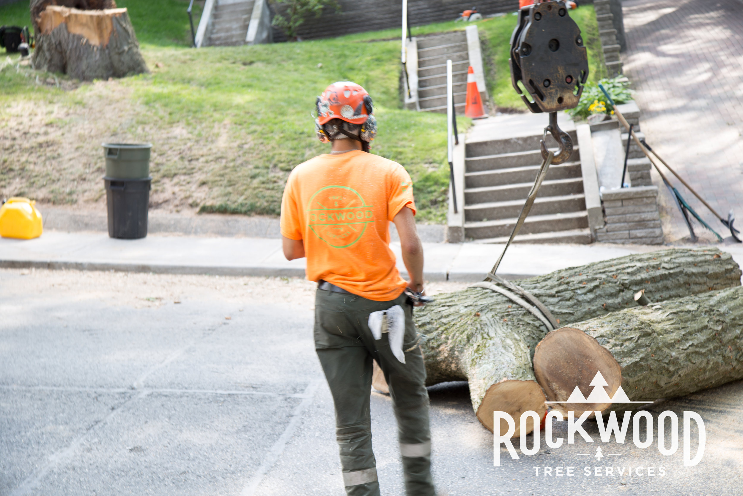 Rockwood Tree Services (53 of 351).jpg