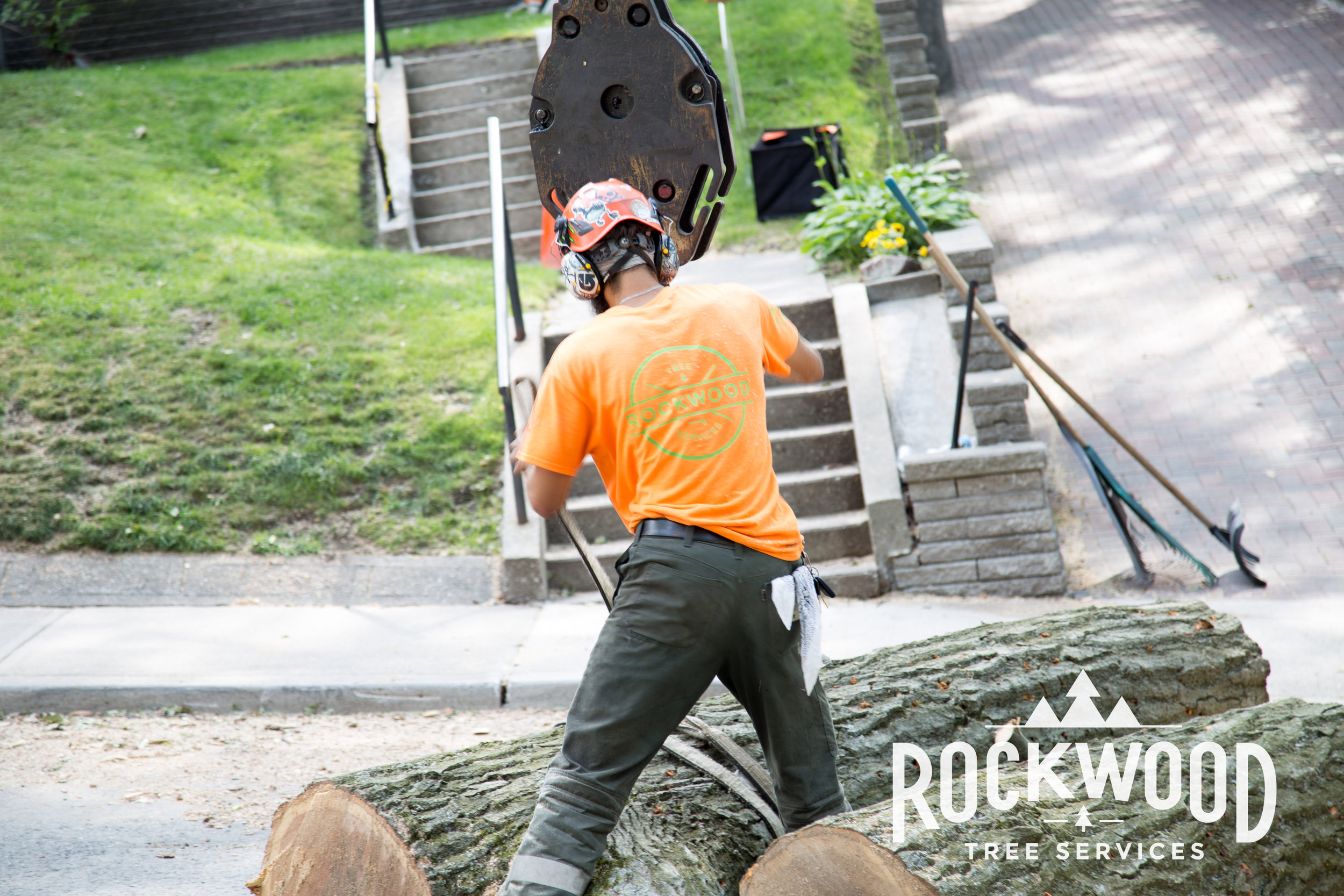 Rockwood Tree Services (55 of 351).jpg