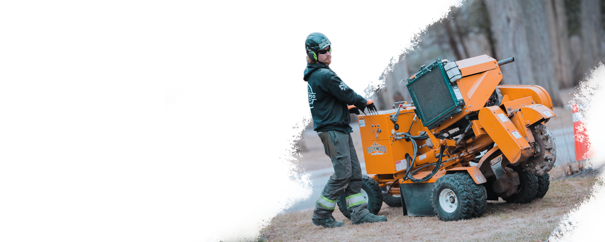 STUMP REMOVAL & CHIPPING - For Every Tree, There's a Stump