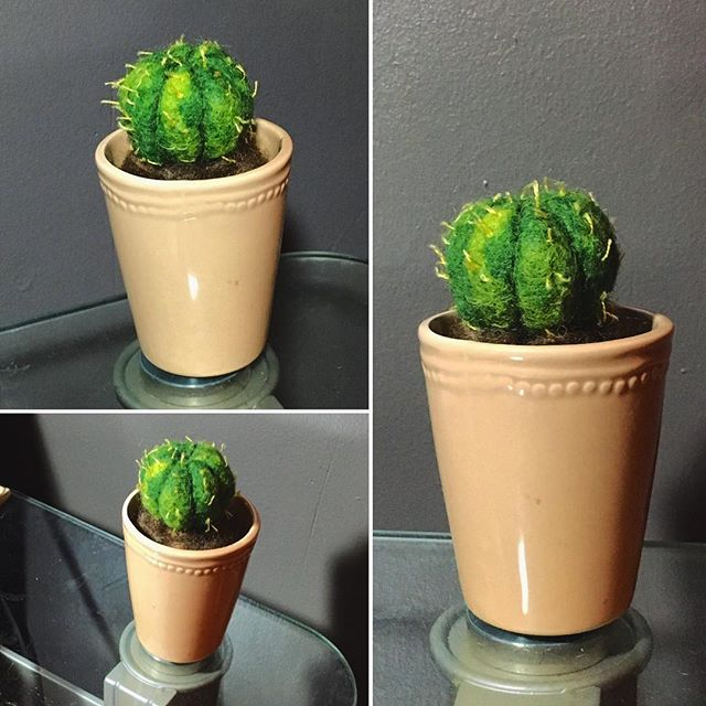 I have a bad habit of killing cacti so I figured I'd just make an unkillable cactus. - - - - - - - -#needlefelted #needlefelter #needlefeltart #needlefelted #needlefeltedplants #succulents #succulentplants #succulent #cactus #cactus🌵 #cactusdecor #crafting #craftgifts #craft #fiberart #fiberarts #wip #learning #plantart #cactusart #clevelandartist #clevelandart #southwest #southweststyle