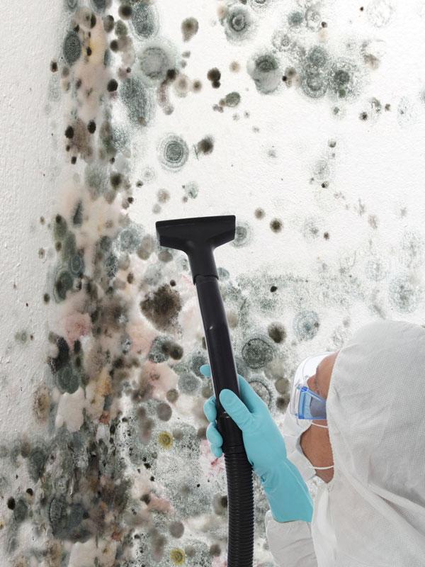 asbestoslarge.jpg