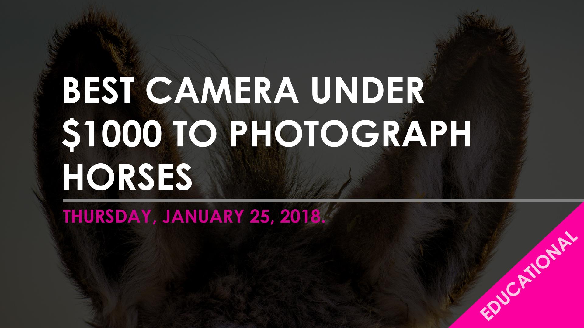 Blog Template - best cam $1000.jpg
