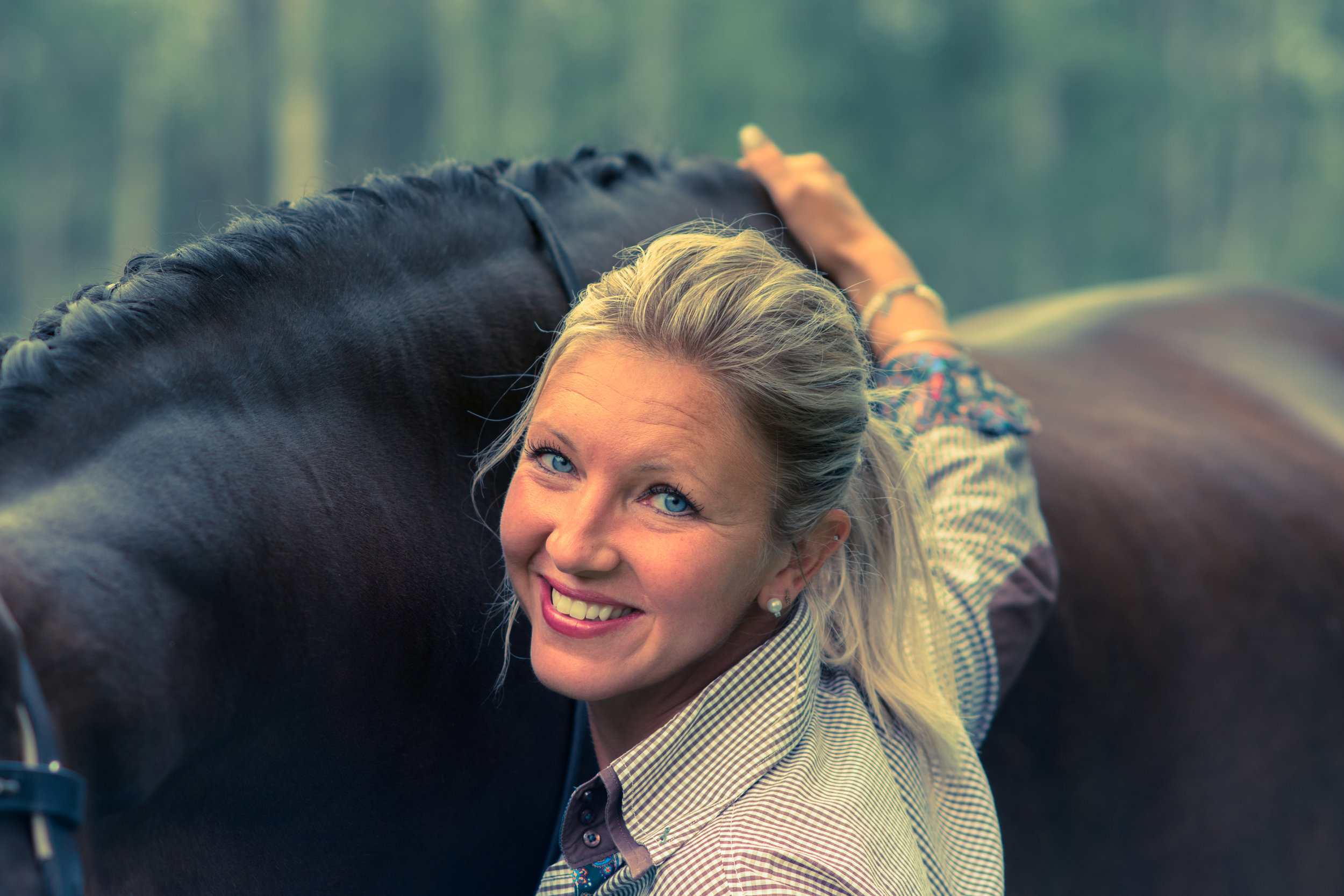 EQUINE PHOTOGRAPHY:COMMERCIAL -