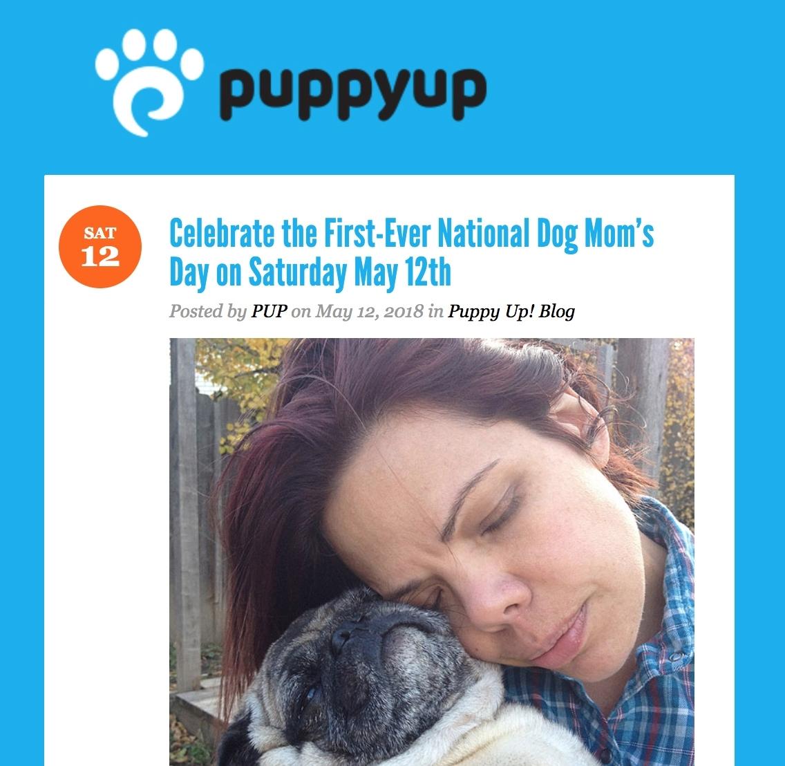 puppyup.jpg