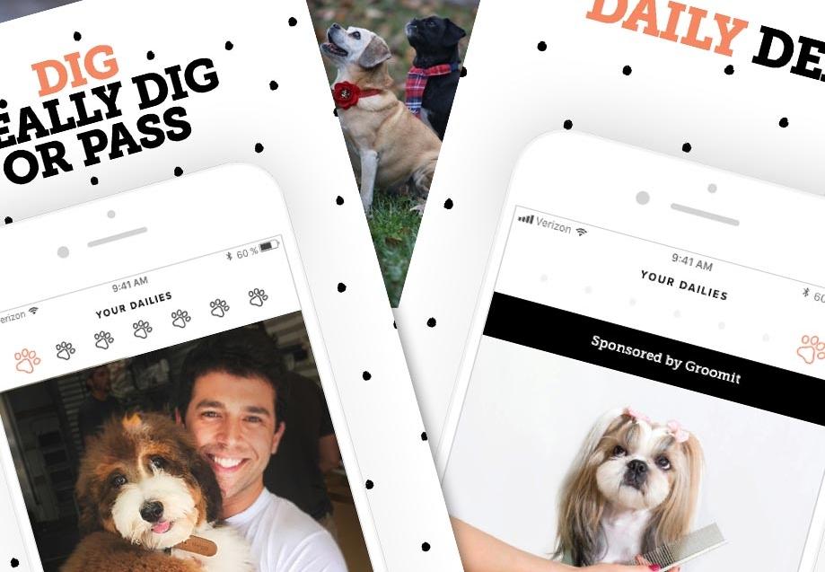 Dig-Dog-Dating-App-Developer-Magazine_3yi0g2dr.jpg