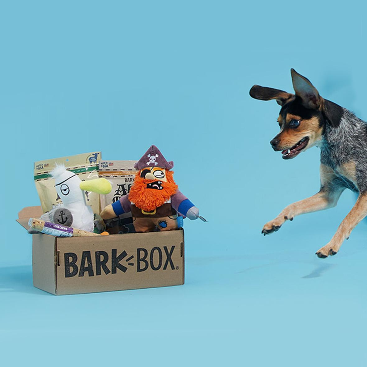 Dig + BarkBox Collaboration -