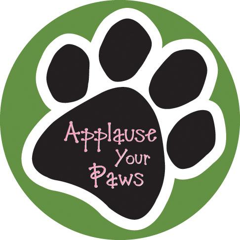 AYP Logo.jpg