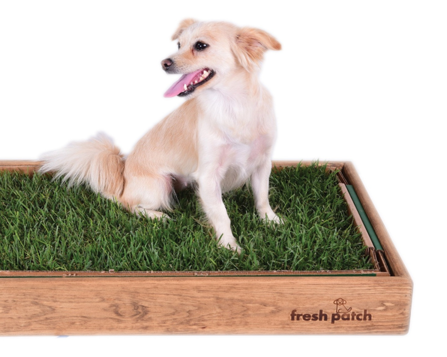 Fresh Patch - Fresh patch is ideal for dogs with yard-less homes or potty training puppies. The all-natural living grass pad absorbs liquids and neutralizes odors. The Fresh Patch is the perfect alternative to wasteful, non-biodegradable plastic potty pads.