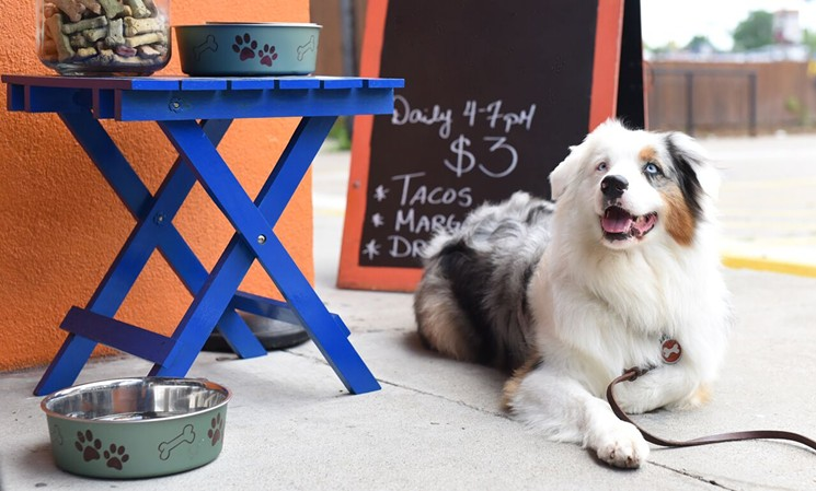 A Plethora of Dog-Friendly Restaurants - Atlanta's delicious southern comfort food can be enjoyed with your pup by your side at all times.Photo by The Bear of Real Estate