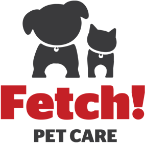 logo-fetch-footer.png