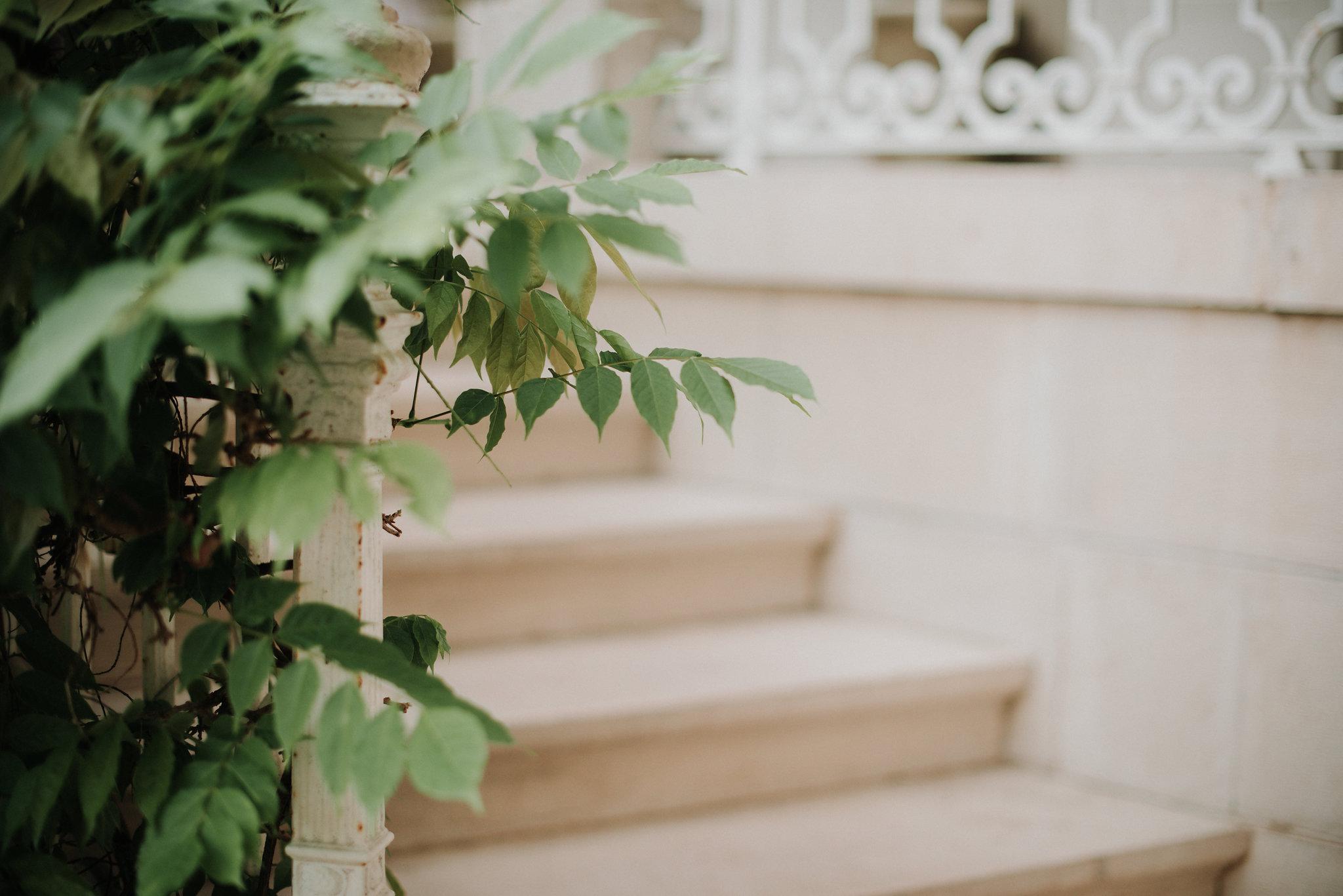 Léa-Fery-photographe-professionnel-lyon-rhone-alpes-portrait-creation-mariage-evenement-evenementiel-famille-1052.jpg