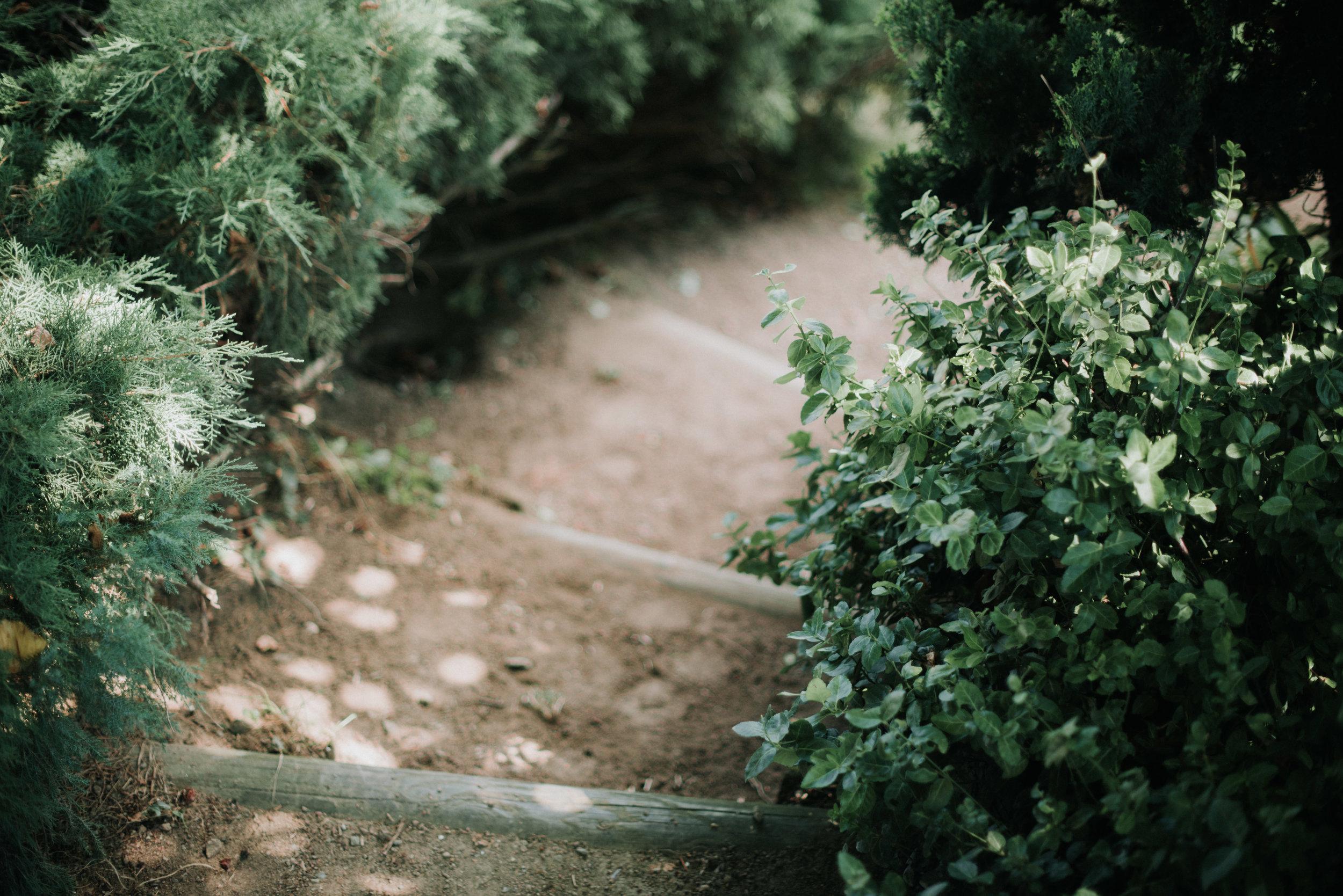 Léa-Fery-photographe-professionnel-lyon-rhone-alpes-portrait-creation-mariage-evenement-evenementiel-famille-7249.jpg