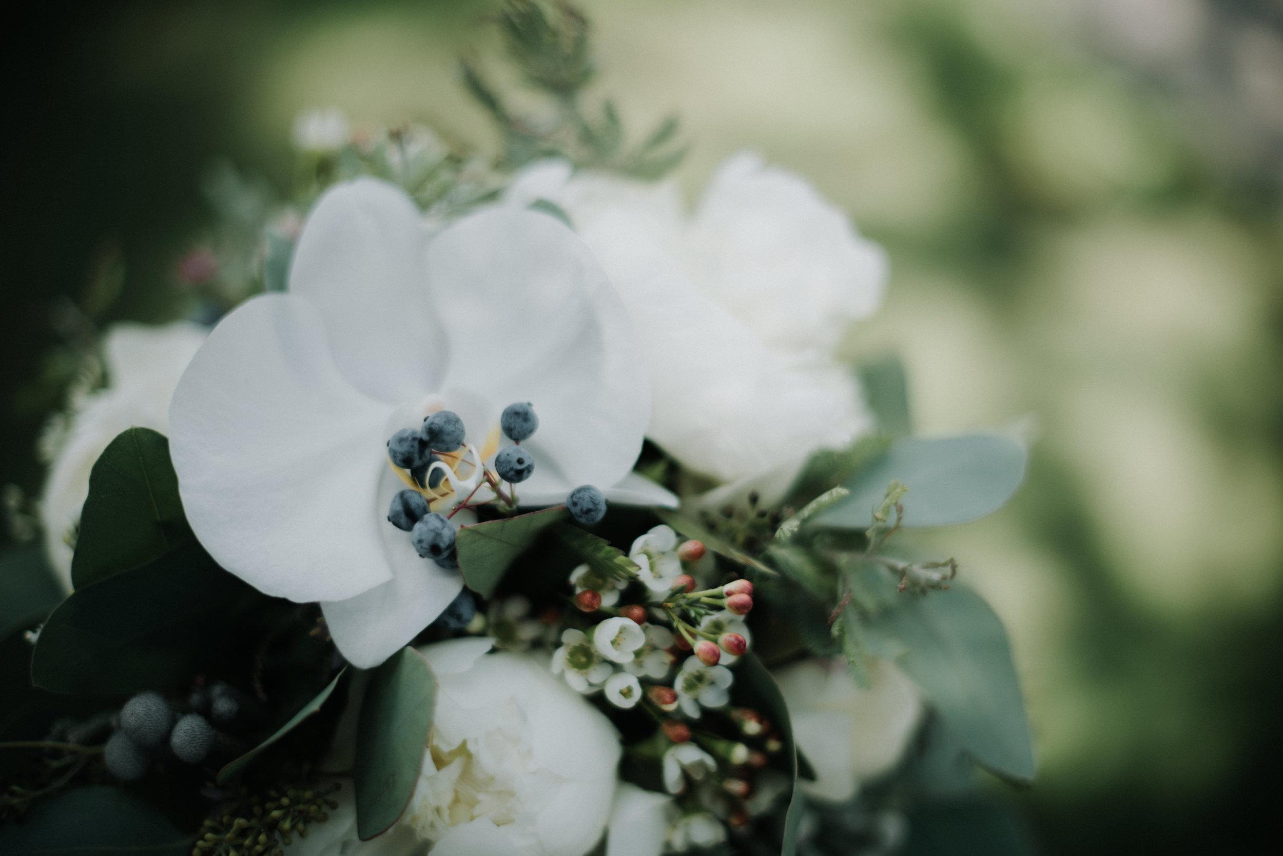 Léa-Fery-photographe-professionnel-lyon-rhone-alpes-portrait-creation-mariage-evenement-evenementiel-famille-8029.jpg