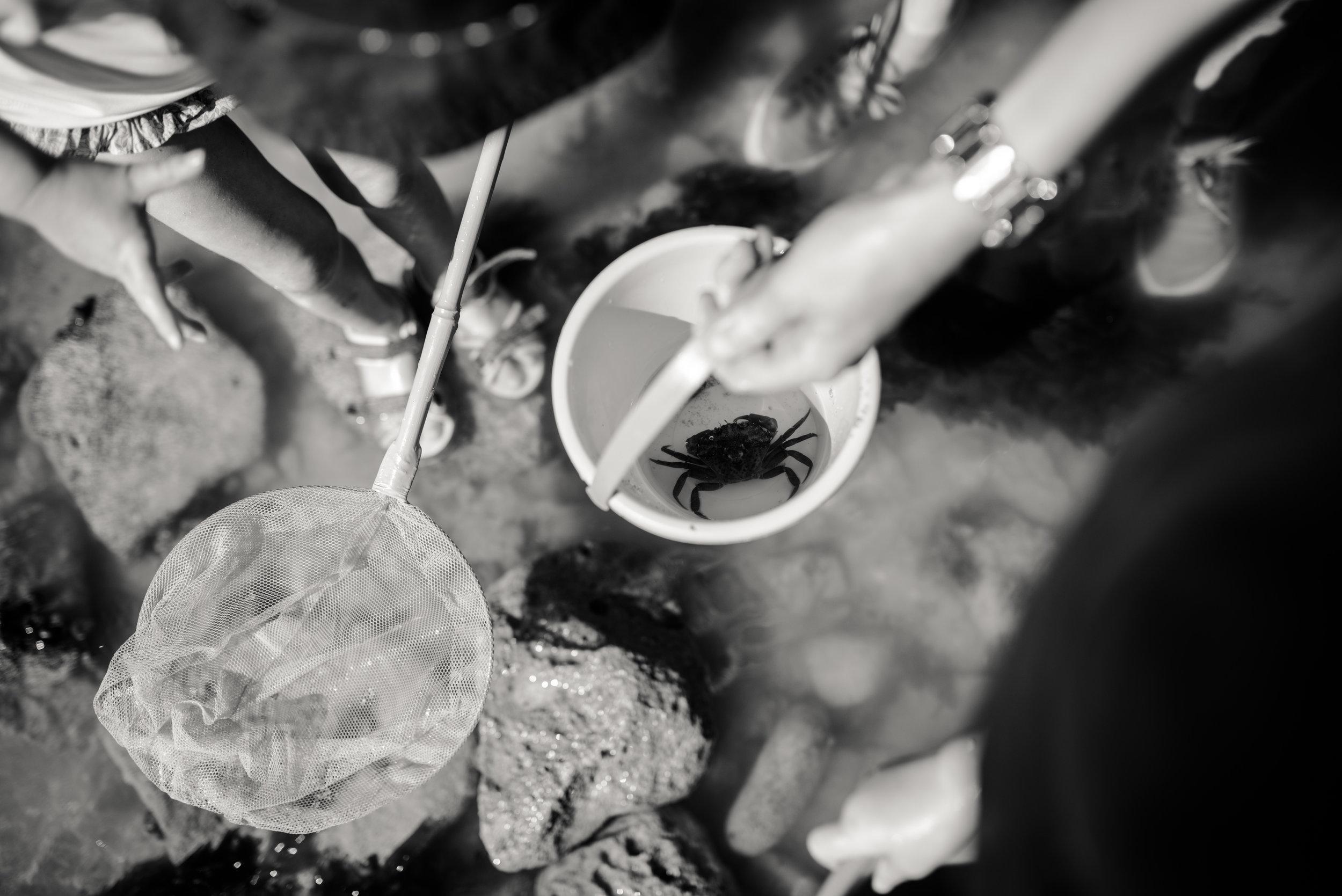 Léa-Fery-photographe-professionnel-lyon-rhone-alpes-portrait-creation-mariage-evenement-evenementiel-famille-2719.jpg