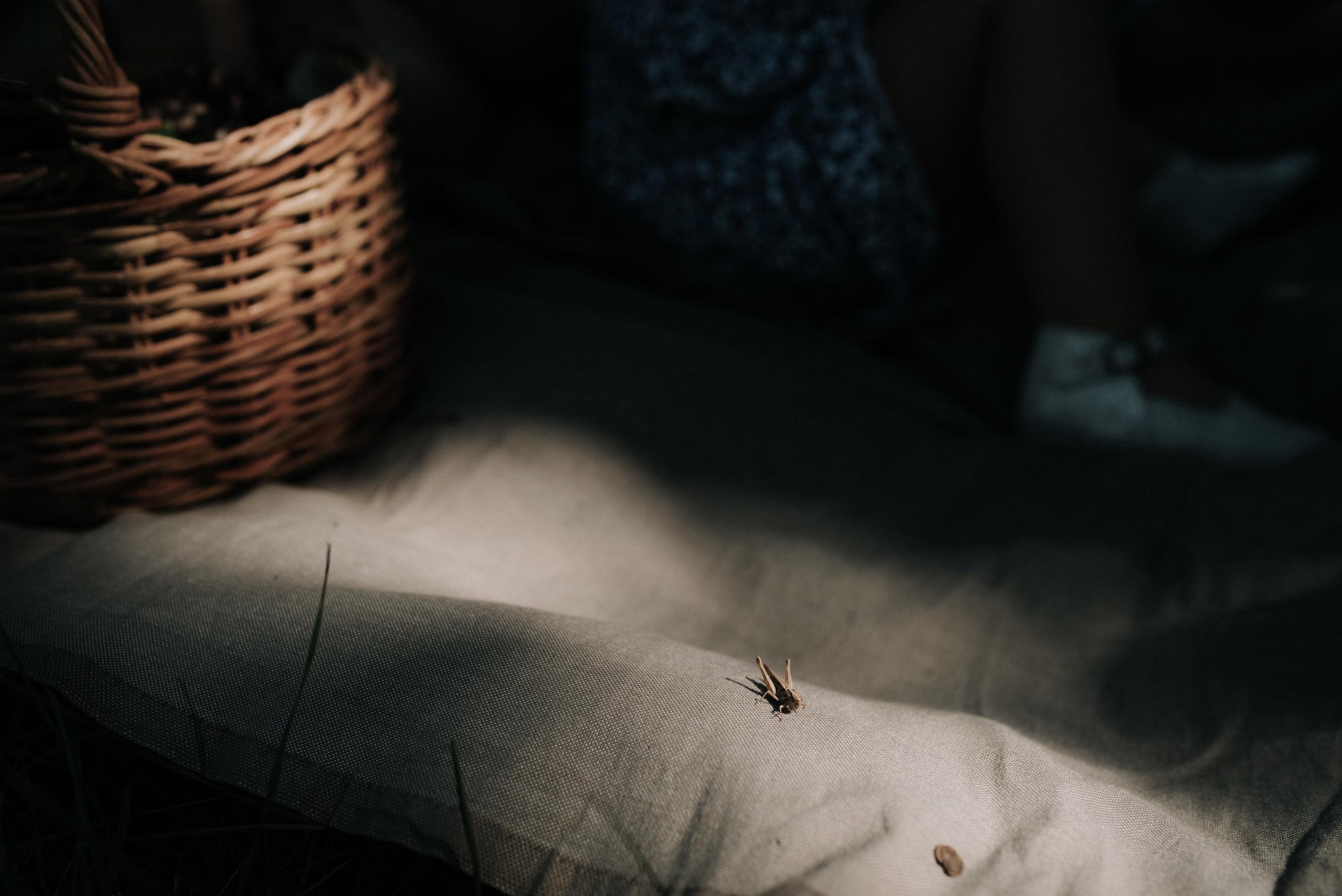 Léa-Fery-photographe-professionnel-lyon-rhone-alpes-portrait-creation-mariage-evenement-evenementiel-famille-4689.jpg