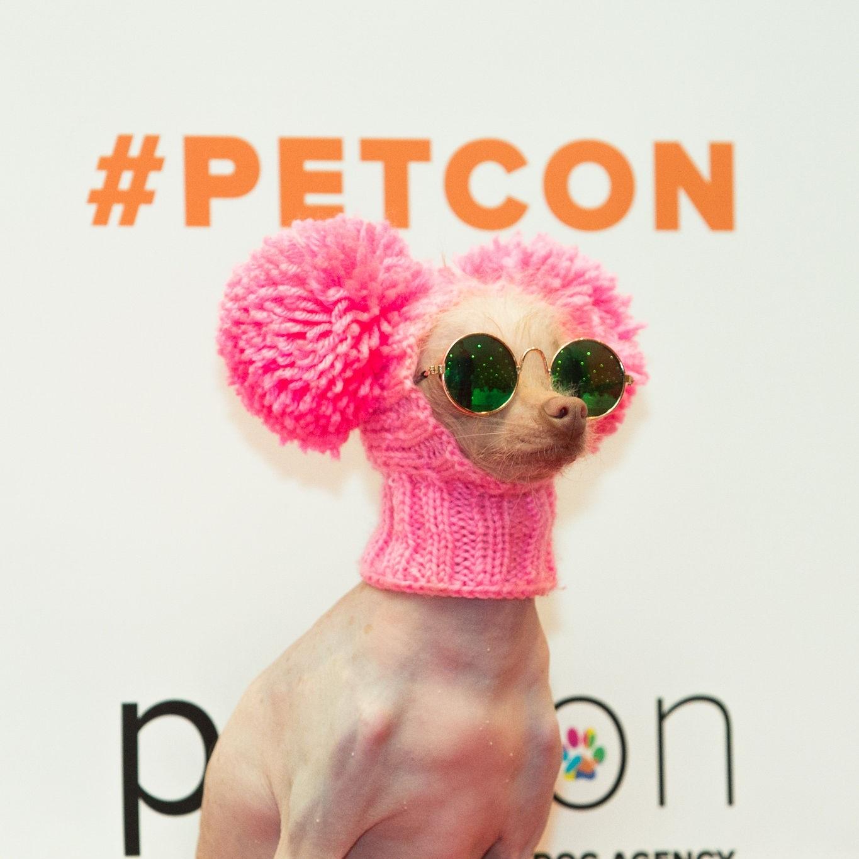 Petcon2018_1808.jpg