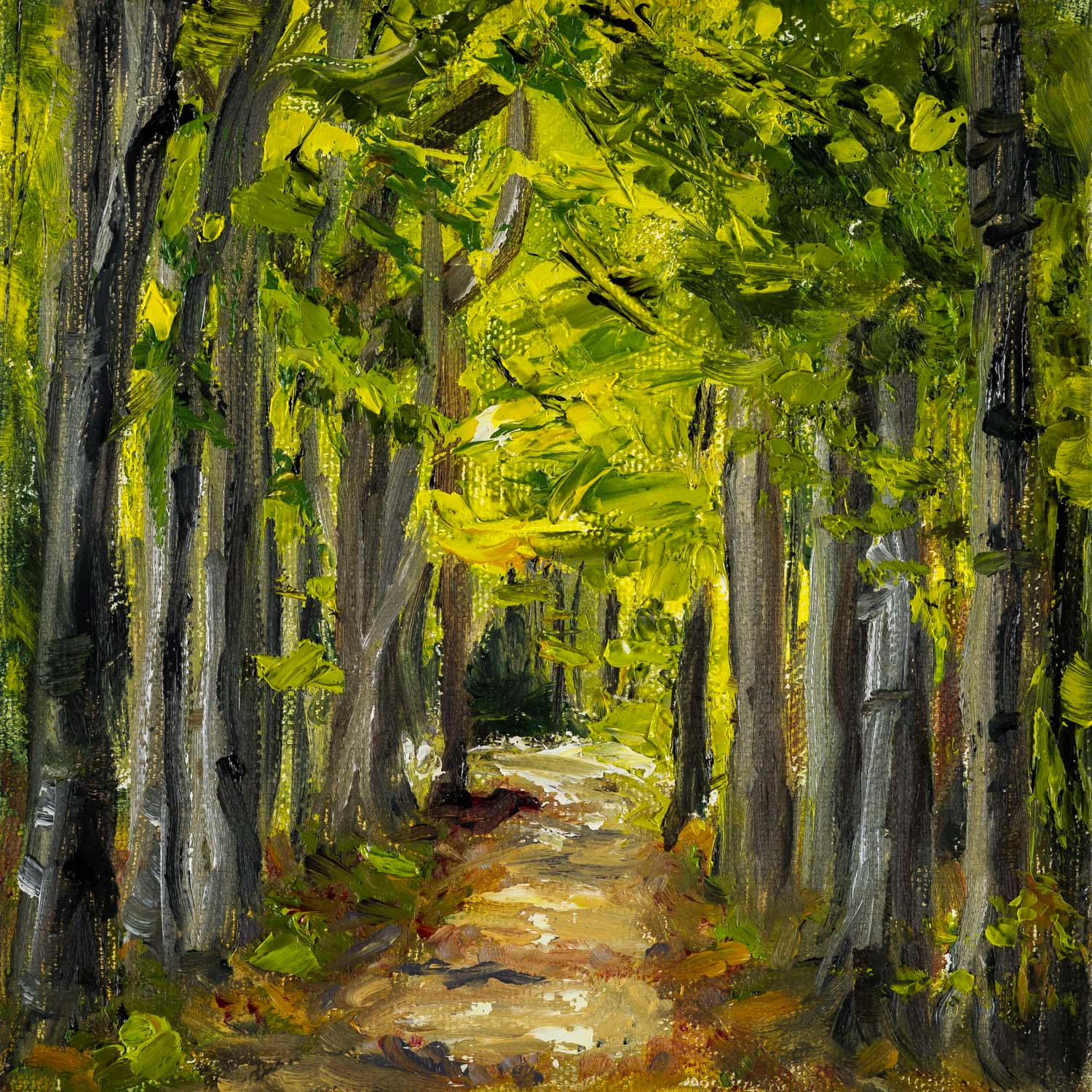 Forest Trail  6x6 inches, oil on canvas  SOLD