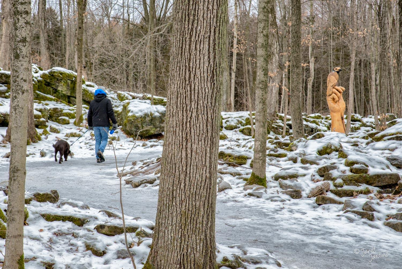 Walk-Along-Hide-&-Seek-Trail_Photo_copyright_Janet_Jardine.jpg