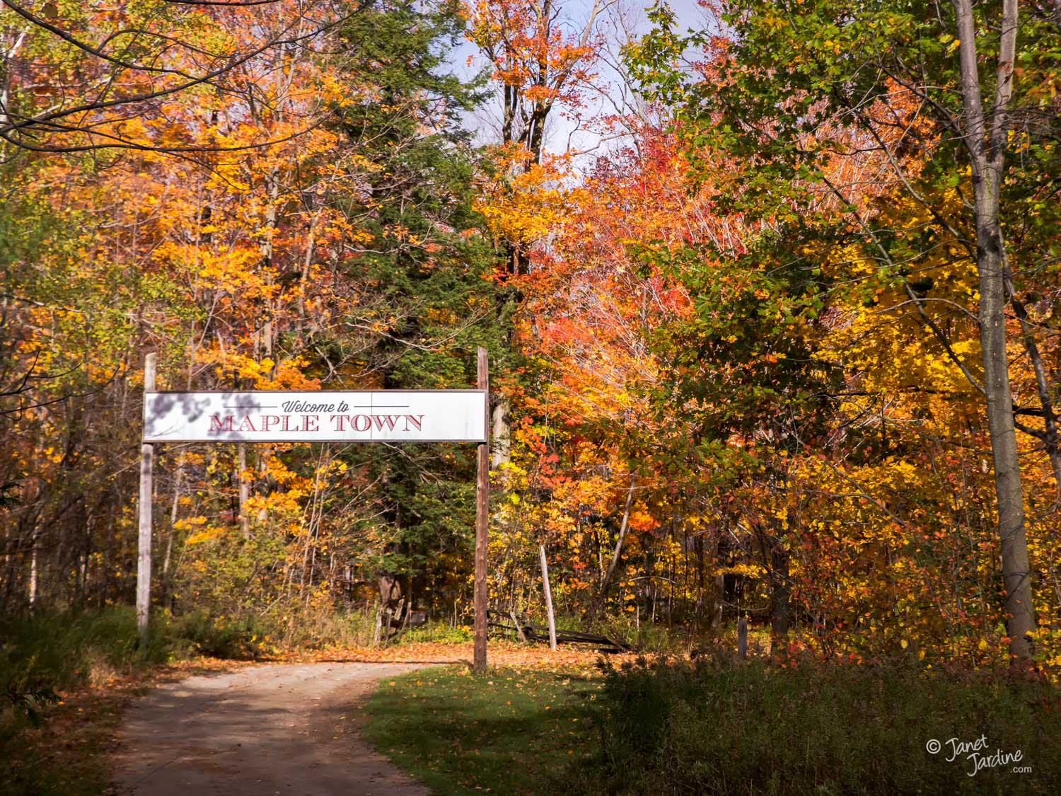 Welcome-to-Maple-Town_Photo_copyright_Janet_Jardine.jpg