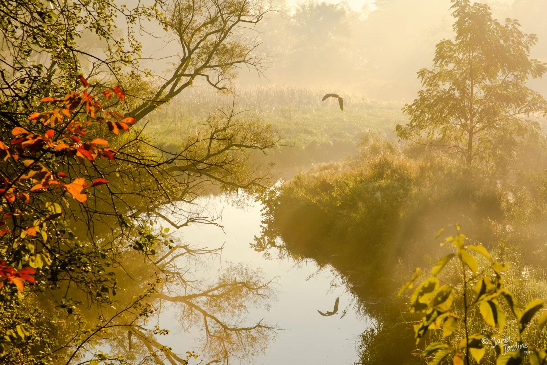 Gentle-Flight-Through-Hendrie-Valley_Photo_copyright_Janet_Jardine.jpg