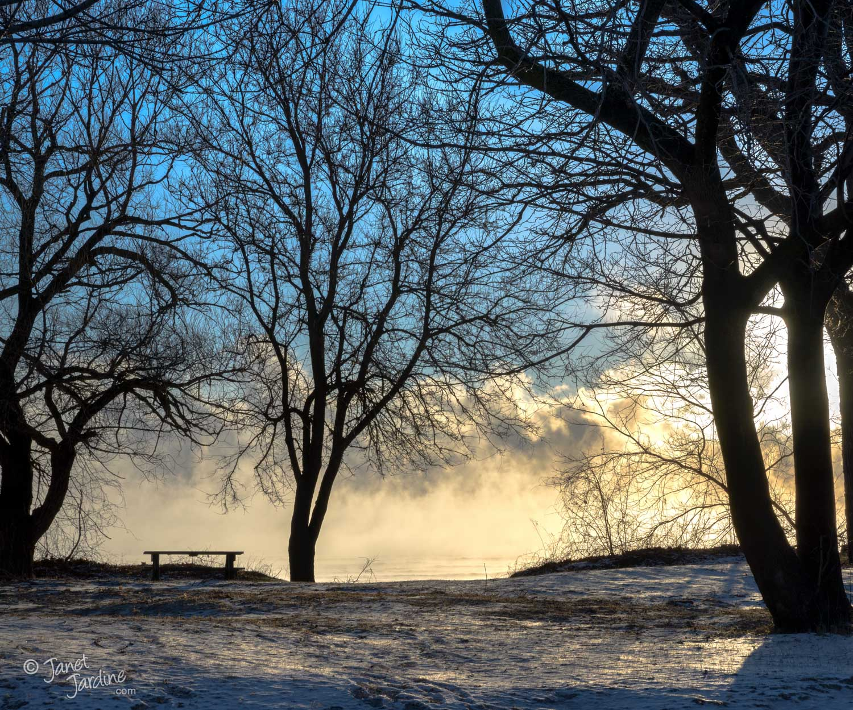 Burlington-Beach-Winter_Photo_copyright_Janet_Jardine_SquareSpace.jpg