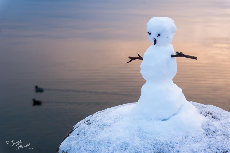 Lakefront-Snowman_Photo_copyright_Janet_Jardine_SquareSpace.jpg