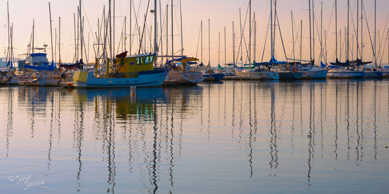 Morning-Reflections_Photo_copyright_Janet_Jardine_SquareSpace.jpg