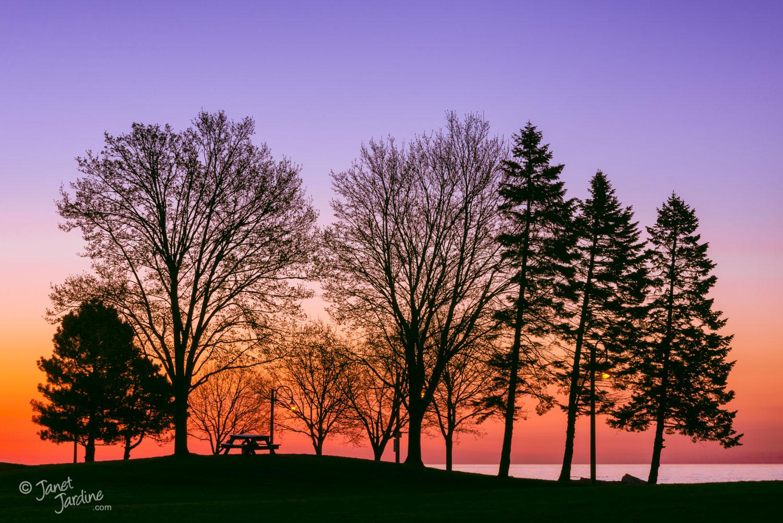 Sunrise-Silhouette-Lake-Ontario--Burlington_Photo_copyright_Janet_Jardine_SquareSpace.jpg