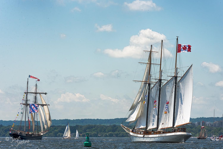 Tall-Ships-Canada-150-in-Burlington_Photo_copyright_Janet_Jardine_SquareSpace.jpg