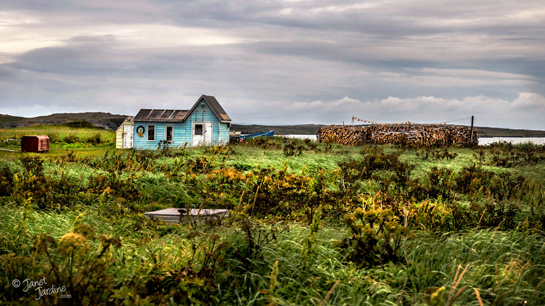 Northern-Peninsula-Homestead_Photo_copyright_Janet_Jardine_SquareSpace-2.jpg