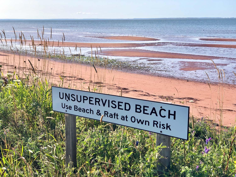 Beach__Photo_copyright_Janet_Jardine_SquareSpace-4.jpg