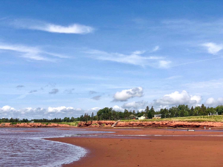 Beach__Photo_copyright_Janet_Jardine_SquareSpace-6.jpg