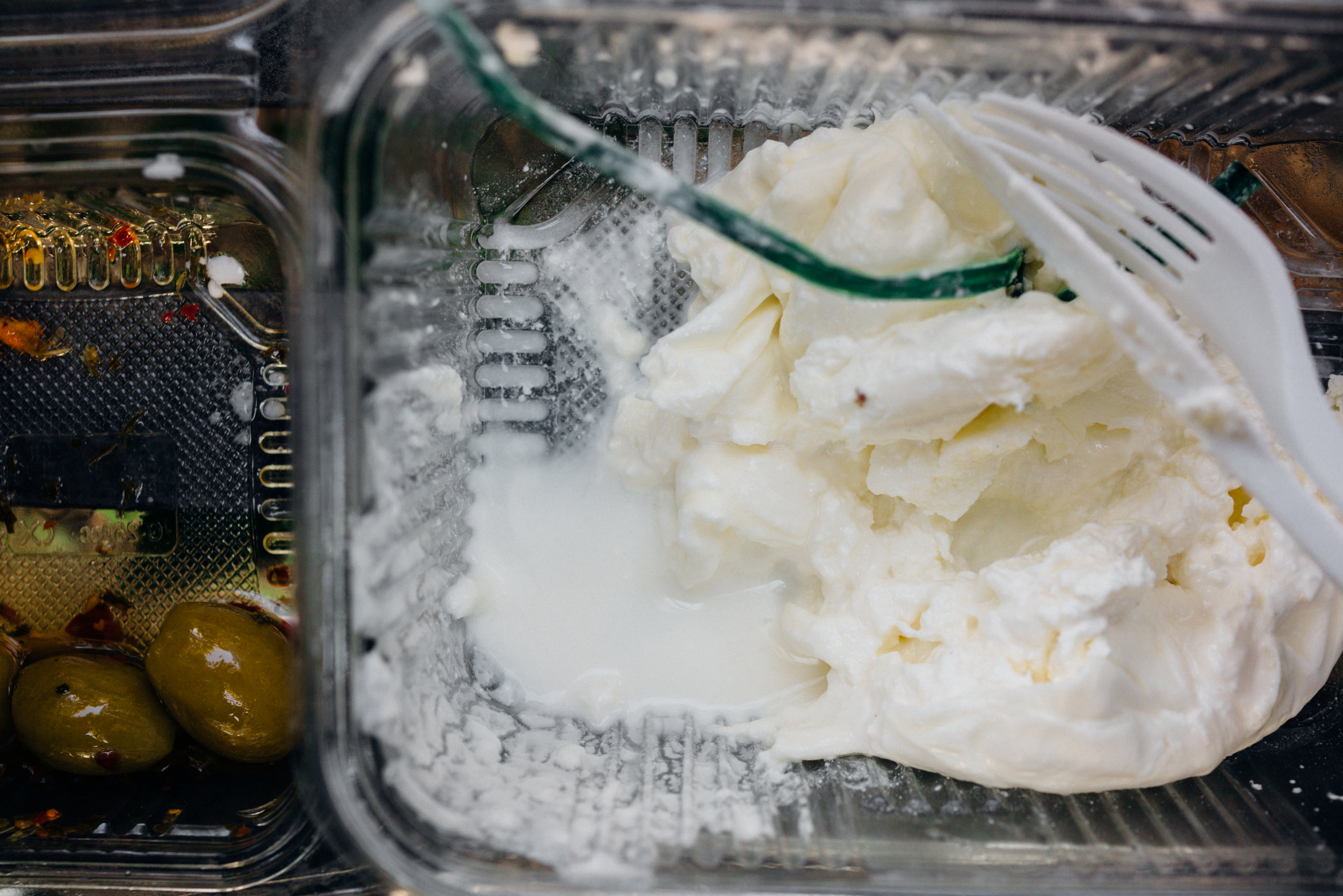 Plain Burrata, consumed at the gardens in Villa Borghese