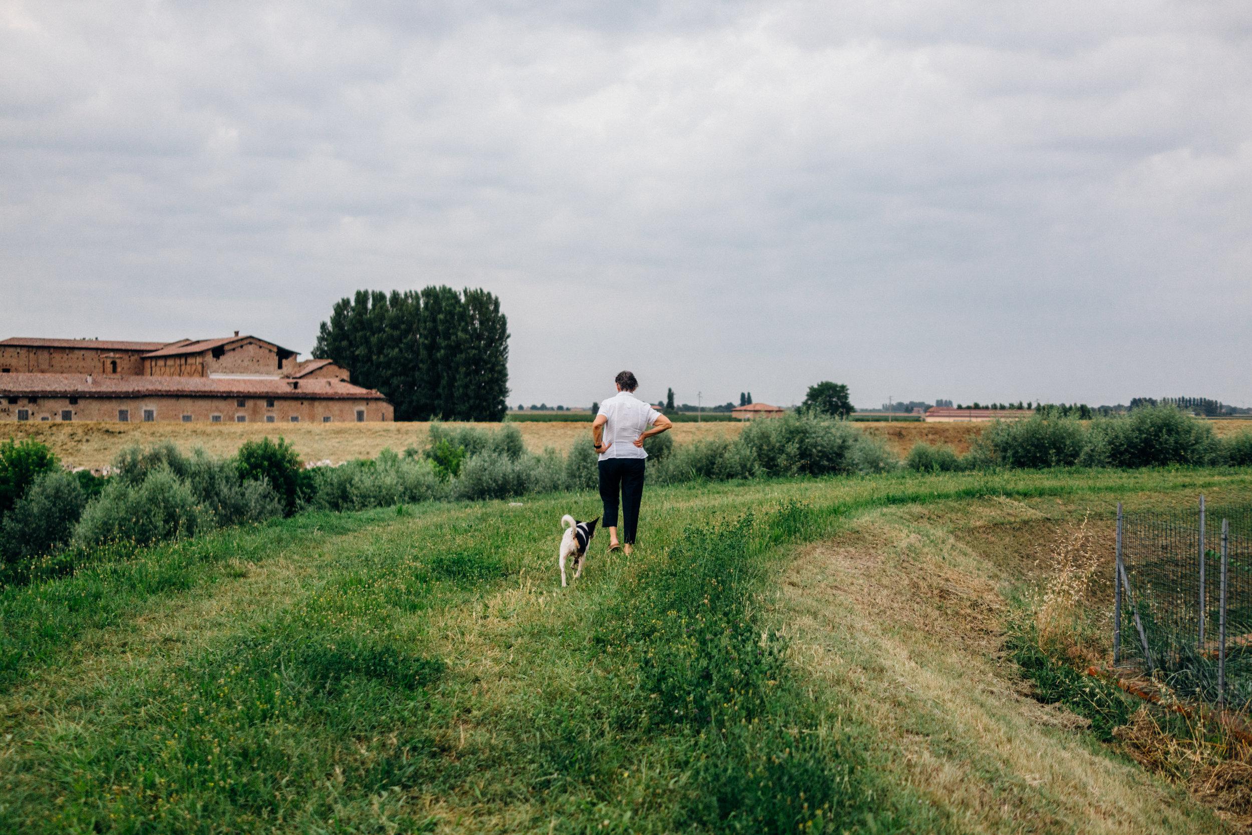 Bomporto, Modena, June