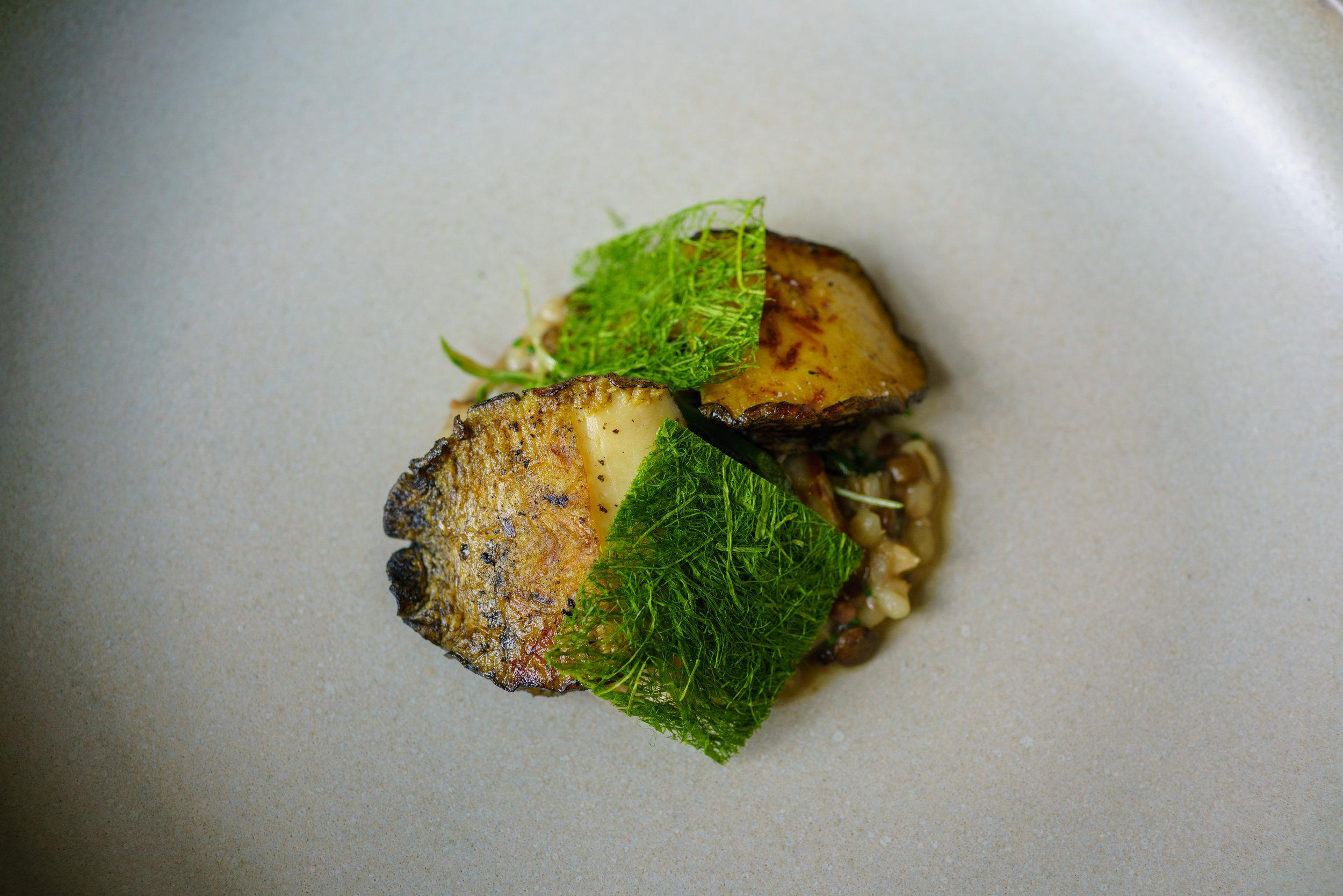 Jeju Abalone, Garlic Shoot